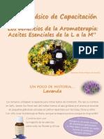 Módulo Los Beneficios de La Aromaterapia-AE L a M