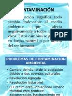Contaminacion Ambiental Curso Esposicion