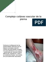 Complejo Cutáneo Vascular de La Pierna