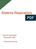 02 303 2c04 Sistema Respiratorio2medio Alunos