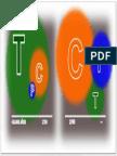 QEC TCP - CPT Gráfico