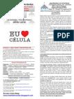 Boletim semanal - 23 de agosto de 2015