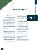 Fundamentals of DS3