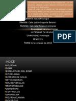 10 Atlas-neurofisiologia[1] Jaret y Yatzaret