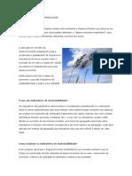 Indicadores de Sustentabilidad1