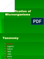 Classification of Microorganisms.pptx