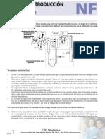 NF.pdf