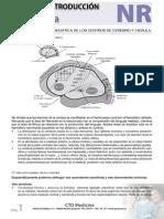 NR_ENAM.pdf