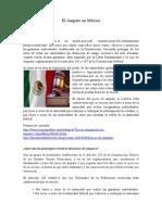 El Amparo en México