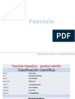 Parasitologia Parte VI