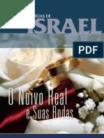 Noticias de Israel 06-2009