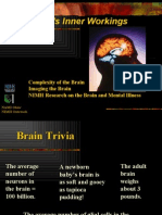 Brain for Web