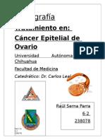 Tratamiento Cancer Epitelial de Ovario