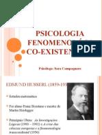 slidespsicologiafenomenolgico-existencial-121129190326-phpapp01.ppt