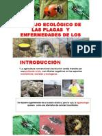 Manejo Ecologico de Plagas (Metodos)