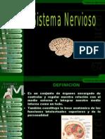 172592816 Sistema Nervioso