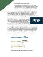 Tugas Biokimia Biosintesis Protein i