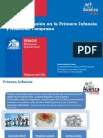Primera Infancia y Atención Temprana.pdf