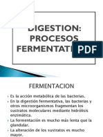 Digestion Fermentativa