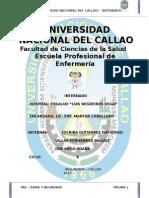 TRABAJO PAE (1).doc