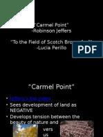 Carmel Point_Scotch Broom