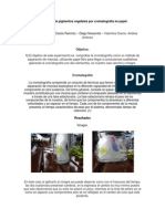 Trabajo Cromatografia PDF