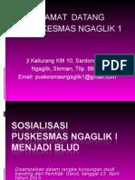 Sosialisasi Pusk Blud (Presentasi)