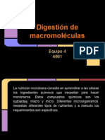 Digestion de macromeleculas10junio.pdf