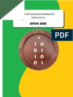 256 Tratado del signo Ofun She
