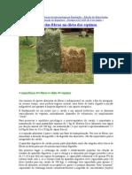 Publicação de entrevista na revista portuguesa Equitação