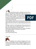 Tudo sobre Cavalos