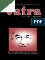vatra-nr-6-7-2013