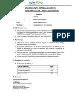 Gdp Silabo - Virtual