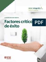 Factores Criticos de Exito - La Integracion como Objetivo
