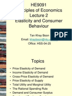 HE9091 Lecture 2 elasticity and consumer