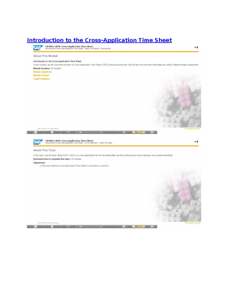 cats cross application time sheet overview business process