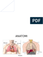Css Radiologi Chf, Bendungan Paru, Edema Paru