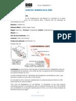 Proyectos Mineros en El Perú