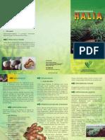halia.pdf