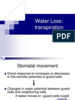 Water Loss Transpiration
