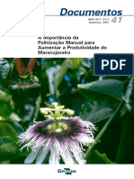 A Importancia Da Polinizacao Manual Para Aumentar a Produtividade Do Maracujazeiro