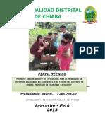 PERFIL TÉCNICO PAUCHO -TGP.docx