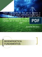 Bioenergética 2014-1