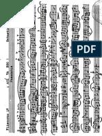 Fliscorno 1º.PDF