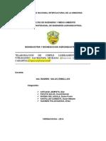 Plan Negocios Chifle 2014