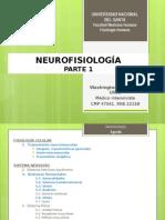 Neuro Fisio 1
