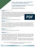 Deshidrataci_n de Granadilla Por Convecci_n Para Elaboracion de Bebidas Aromaticas