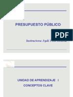 SISTEMA_DE_PRESUPUESTO.pdf
