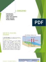 Ciclo Del Oxigeno Agronomia 1 A