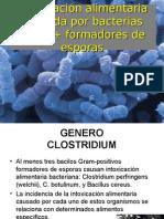 Clostridium Jose Luis